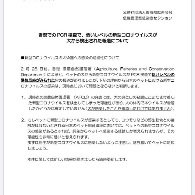 最近、問題となっている新型コロナウイルスですが、香港の方でワンちゃんからウイルスが確認されたと報道がありました。この事で、お客様からどうなん?と聞かれる事が多いです。現段階での、日本の公益社団法人東京都獣医師会の方でも、こちらの様に発表がありました。こちらの発表の通り、ワンちゃんの粘膜から付着したウイルスを検出したが、体内から増殖したかどうか確認が取れていないという事でした。つまり、ワンちゃんに確実に感染したとは言い切れないという判断です。今後、これに関して検証していく必要性がありますが、現段階では感染していないと判断されているようです。飼い主を不安に陥れるような誤った情報が沢山流れていますので、ご注意下さいね️ #toyama  #富山#toyamashi#富山市  #imizusi #射水市 #takaokashi#高岡市#grooming#dogsalon#ドッグサロン#トリミングサロン#torimming  #トリミング#スキンケア#犬のいる暮らし#ふわもこ部#ヒトリマー#BOKUMO.#BOKUMO取扱店富山#bokumo.#アニマー湯#animaryu取扱店#No無麻酔歯石取り#アーガイルディッシュ取扱店